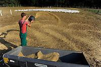 GERMANY, Wermsdorf, geese breeding for meat and down production / DEUTSCHLAND Gaensezucht Eskildsen in Wermsdorf suedlich von Leipzig, Gaensezucht und Daunenherstellung, Betrieb gehoerte zu DDR Zeiten zum Kombinat industrielle Mast KIM