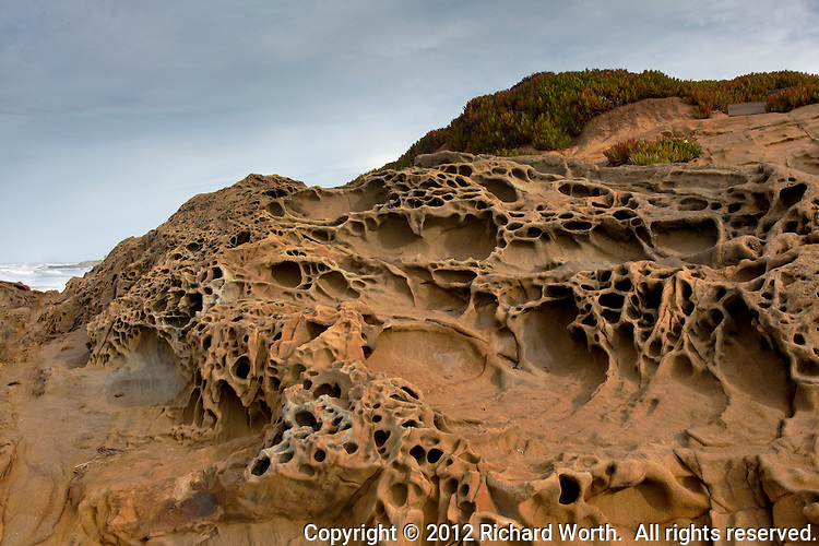 Tafoni formations at Bean Hollow State Beach south of San Francisco with ice plant and clouds.