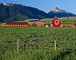 Wallowa County, OR   <br /> The OK Quarter Circle barn (built in 1933) in the Wallowa Valley with Mount Howard and Bonneville Mountain in the distance