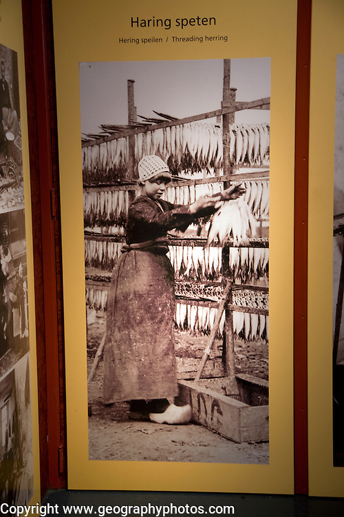 Old photo of girl threading herring fish, Zuiderzee museum, Enkhuizen, Netherlands