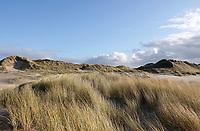 Nederland - Camperduin - 2019 .  De kustlijn werd hier lange tijd gedomineerd door de Hondsbossche Zeewering; een 5,5 km lange verharde dijk die het land beschermde tegen de zee. In 2015 ging het gebied geheel op de schop. Het strand en de duinstrook zijn verbreed. Er is ook een strandlagune aangelegd  Foto Berlinda van Dam / Hollandse Hoogte