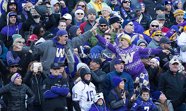 Husky fans celebrate a big play.