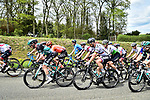 The peloton including Peter Sagan (SVK) Bora-Hansgrohe during the 83rd edition of La Fl&egrave;che Wallonne 2019, running 195km from Ans to Huy, Belgium. 24th April 2019<br /> Picture: ASO/Gautier Demouveaux | Cyclefile<br /> All photos usage must carry mandatory copyright credit (&copy; Cyclefile | ASO/Gautier Demouveaux)
