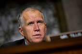 United States Senator Thom Tillis (Republican of North Carolina) listens to Vice Admiral Michael M. Gilday, United States Navy, during his confirmation hearing to be Admiral and Chief of Naval Operations at the Department of Defense on Capitol Hill in Washington D.C., U.S. on July 31, 2019. <br /> <br /> Credit: Stefani Reynolds / CNP