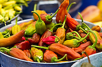 Fresh Food, Farm to Table - Peppers, Tasty and Colorful
