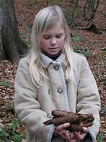 Mädchen, Kind hat Fichten-Zapfen, Zapfen im Wald gesammelt, Europäische Fichte, Gewöhnliche Fichte, Rotfichte, Picea abies, Christmas Tree, Common Spruce, Epicéa