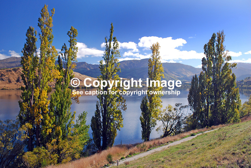 Lake Hayes, between Queenstown & Cromwell, South Island, is one of New Zealand's most spectacularly beautiful lakes. It is a wildlife haven and a popular fishing destination. 201004065118...© Victor Patterson, 54 Dorchester Park, Belfast, N Ireland. Tel: +44 2890661296; Mobile: +44 7802 353836; Emails: victorpatterson@me.com & victorpatterson@gmail.com; www.victorpatterson.com
