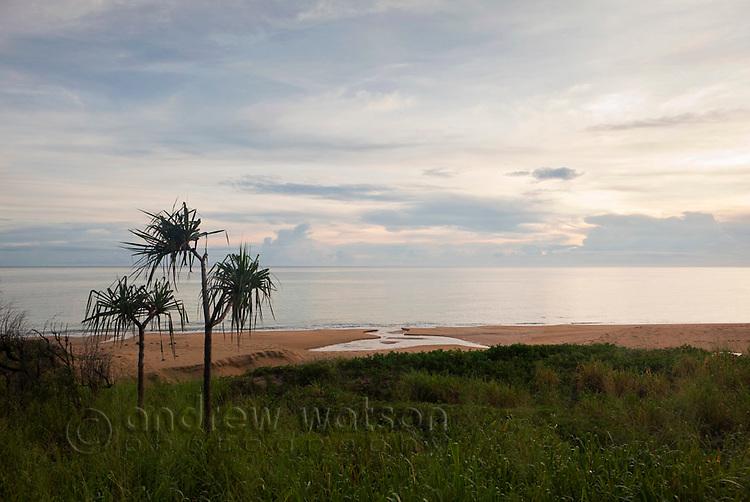 Coastal scenery.  Wangetti Beach, Cairns, Queensland, Australia