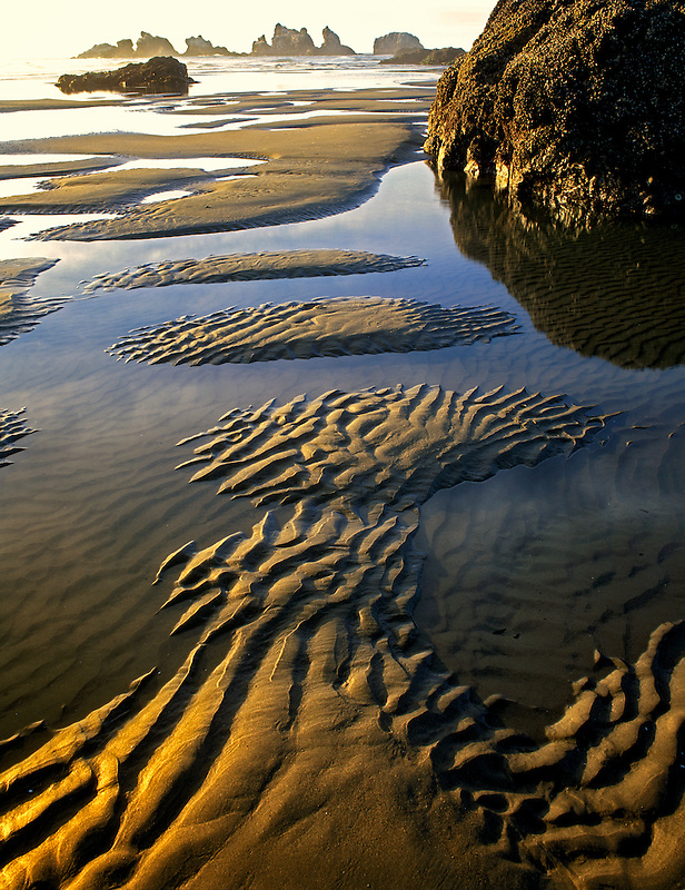 Low tide  pools and rippled sand at Bandon Beach, Oregon