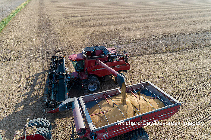 63801-13419 Harvesting soybeans and unloading into grain cart in fall-aerial  Marion Co. IL