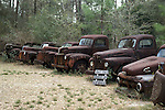 Row of Rusted Trucks
