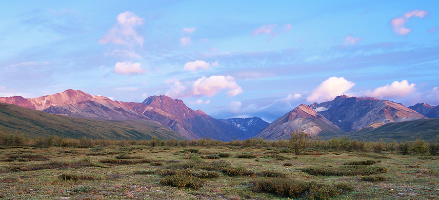 The view of sunrise from the perspective of a backpacker on the tundra of Denali National Park.
