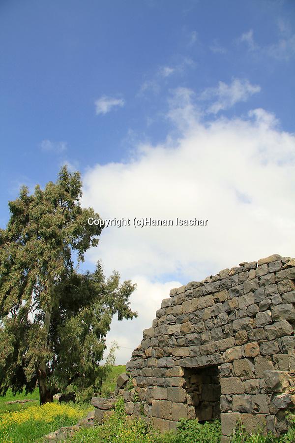 Golan Heights, ruins of Khan Juhader