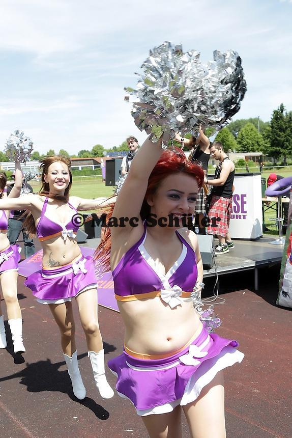 Frankfurt Universe Cheerleader - Frankfurt Universe vs. Kaiserslautern Pikes