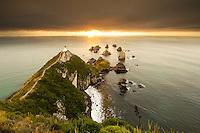 Catlins New Zealand Images