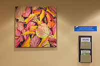 Overlake Cardiology Clinic, Bellevue, Washington