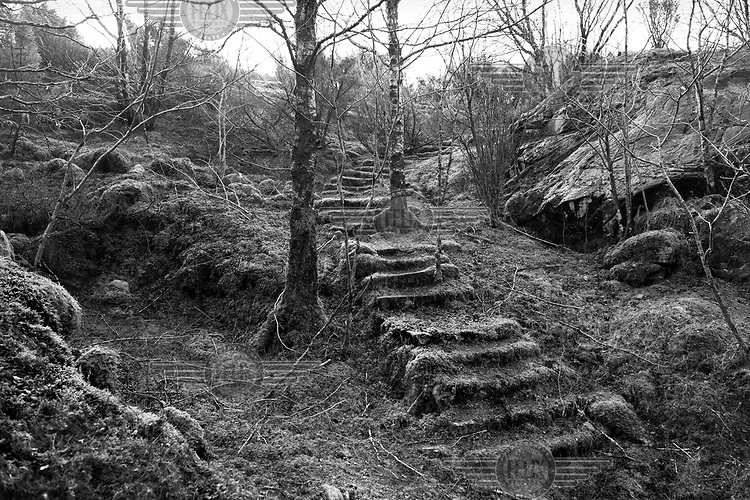 Steps leading up a hill which were used by the German Army during WWII are visible near Eltravag in Norway along the route of the Atlantic Wall (Atlantikwall in German).The Atlantic Wall (or Atlantikwall in German) was a system of defensive structures built by Nazi Germany between 1942 and 1945, stretching over 1,670 miles (2,690 km) along the coast from the North of Norway to the border between France and Spain at the Pyrenees. The wall was intended to repulse an Allied attack on Nazi-occupied Europe and the largest concentration of structures was along the French coast since an invasion from Great Britain was assumed to be most likely. Slave labour and locals paid a minimum wage were drafted in to supply much of the labour. There are still thousands of ruined structures along the Atlantic coast in all countries where the wall stood except for Germany, where the bunkers were completely dismantled.