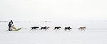 Dog team Yellowknife Bay