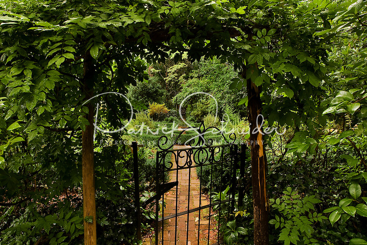 Photography of Wing Haven Gardens and Bird Sanctuary in Charlotte, NC. The garden, created in 1927, includes formal gardens of flowers, trees and shrubs, as well as wooded areas of wild flowers and ferns. Photo is part of a larger Wing Haven photo package.