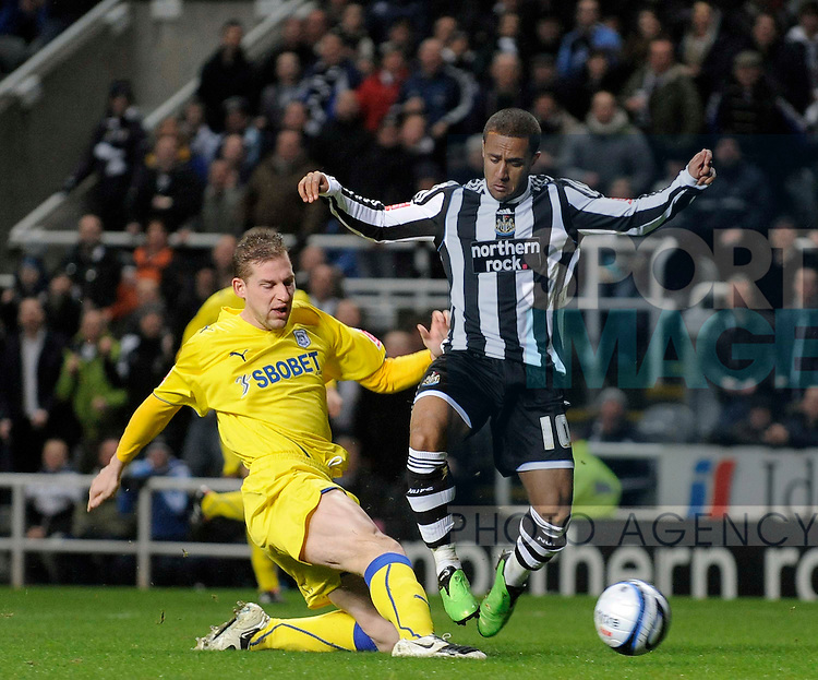 Newcastle's Wayne Routledge and Cardiff's Gabor Gyepes.