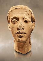 Statue Portrait head of Nefertiti. / Porträtköpfe des Königspaares Nofretete. / Egypt 18. Dynasty  (1340 BC) Berlin Neues Museum Cat No: AM 21348.