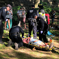 NEW YORK, USA - MAY 27: First responders help yhree people after get injured after a branch falls on them in Riverside Community Park in Upper West Side Manhattan on May 27,2020 in New York, USA.(Photo by Joana Toro/VIEWpress)