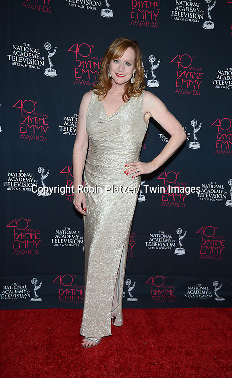 Mary McDonough attends the 40th Annual Daytime Creative Arts Emmy Awards on June 14, 2013 at the Westin Bonaventure Hotel in Los Angeles, California.