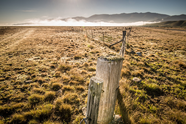 Morning mist and a fenceline near Lake Ohau, South Canterbury, New Zealand