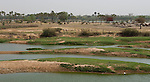 Niamey - Niger, March 30, 2012 -- Banks of River 'Fleuve' Niger at low water-level-- Photo © HorstWagner.eu