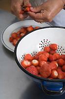 Europe/France/Aquitaine/33/Gironde/Saint-Yzans-de-Médoc : Château  Loudenne, Médoc Cru Bourgeois- la cuisine des vendanges  la cuisinière prépare la salade fraises