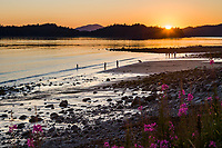 Children enjoy playing in the surf along a beach during a late night summer sunset in Sitka, Alaska.