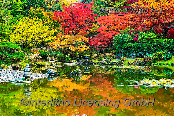 Tom Mackie, LANDSCAPES, LANDSCHAFTEN, PAISAJES, photos,+America, American, Americana, North America, Pacific Northwest, Seattle, Tom Mackie, USA, Washington, autumn, autumnal, color+ful, colourful, fall, horizontal, horizontals, inspiration, inspirational, inspire, japanese garden, japanese maple, landscap+e, landscapes, leaf, leaves, natural, nature, no people, red, reflect, reflecting, reflection, reflections, scenery, scenic,+season, tree, trees, yellow,America, American, Americana, North America, Pacific Northwest, Seattle, Tom Mackie, USA, Washing+,GBTM170607-1,#l#, EVERYDAY