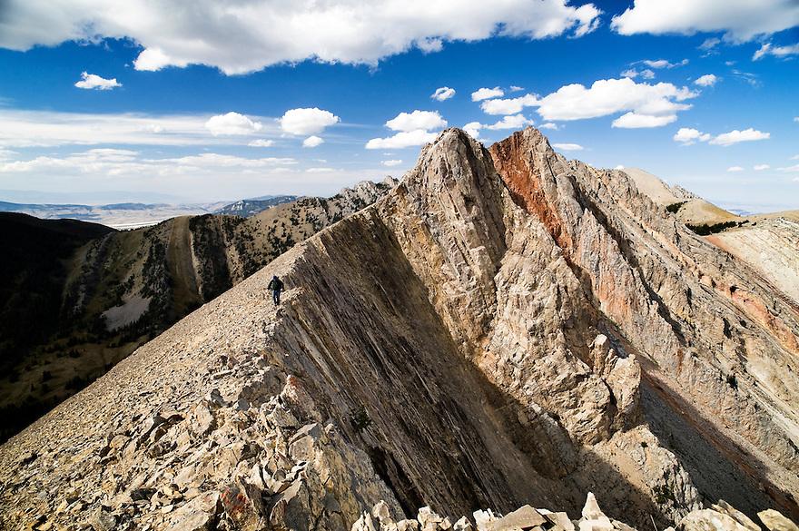 A hiker traverses a ridgeline near Frazier Basin in the  Bridger Mountains near Bozeman, Montana.