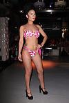 DP Bikini by Deanna Padovani-DePaco - Metropolitan Bikini Fashion Weekend 2013 Held at BOA Sponsored by Social Magazine, Maserati and Ferrari, Hoboken NJ