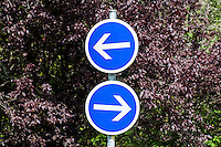 Frankrijk, Saint Nectaire,  5 aug  2014<br /> Verkeersbord wat aangeeft wat de verplichte rijrichting is. Dit staat op een T-kruising.<br /> <br /> Foto (c) Michiel Wijnbergh