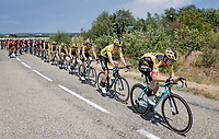 Team Jumbo-Visma controlling the peloton with yellow jersey Wout van Aert (BEL/Jumbo - Visma) in a prominent roll & Tony Martin (DEU/Jumbo-Visma) up front<br /> <br /> Stage 2: Vienne to Col de Porte (135km)<br /> 72st Critérium du Dauphiné 2020 (2.UWT)<br /> <br /> ©kramon
