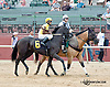 Scrapple winning at Delaware Park on 7/27/13