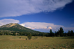 Open plains below mountain, Crater Lake National Park, Oregon