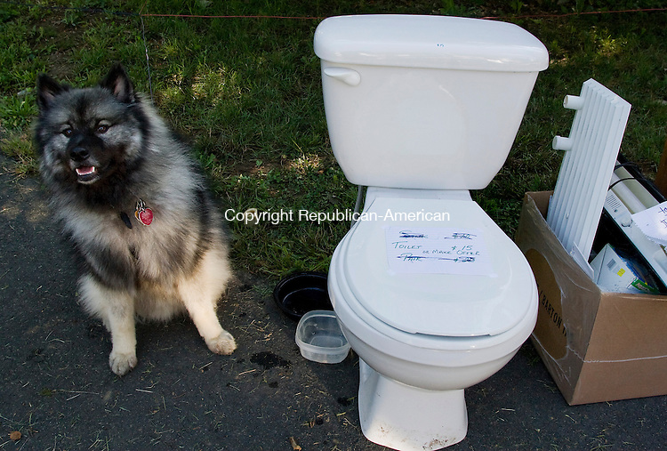 WOODBURY--20 September 2008--092008TJ12 - Cisco, a 2-year-old keeshond, sits next to a toilet for sale at 4 Mountain Road during Woodbury's townwide tag sale on Saturday, September 20, 2008. (T.J. Kirkpatrick/Republican-American)