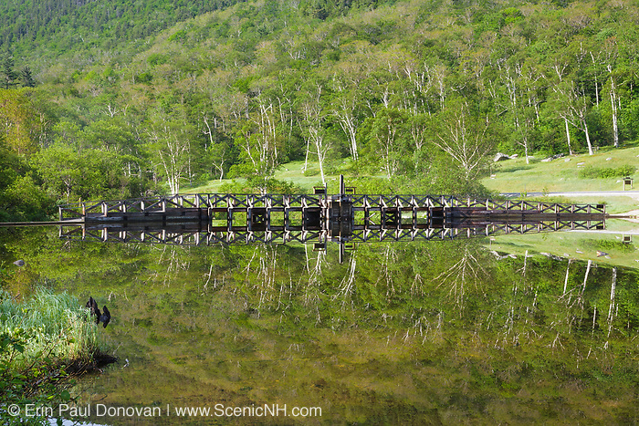 Reflection of a dam on the Saco River at the Willey House Historical site in Hart's Location of the New Hampshire White Mountains. The Willey House Historical site is within Crawford Notch State Park.