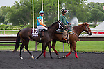 JUL 12,2014:I'm Already Sexy,ridden by Florent Geroux,wins the Modesty Handicap at Arlington Park in Arlington Heights,IL. Kazushi Ishida/ESW/CSM