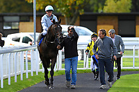 Winner of The Corintech Ruby Anniversary Handicap Stakes  Clear Spring ridden by Shane Kelly and trained by John Spearing is led into the winners enclosure during Afternoon Racing at Salisbury Racecourse on 4th October 2017