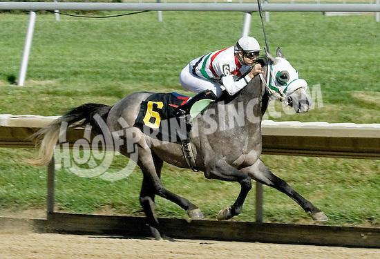 Vip winning at Delaware Park on 7/26/10