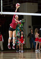 STANFORD, CA - November 3, 2018: Sidney Wilson at Maples Pavilion. No. 1 Stanford Cardinal defeated No. 15 Colorado Buffaloes 3-2.