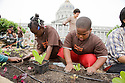 "Volunteers Kaylah Frazier (L) and Rosevelt Curry (R) focus on their work during Community Planting Day (July 12, 2008) of the Slow Food Nation Victory Garden at San Francisco's Civic Center. The garden project ""demonstrates the potential of a truly local agriculture practice that unites and promotes Bay Area urban gardening organizations, while producing high quality food for those in need.""* The garden is planted on the same site as the post-World War II garden sixty years ago. The food will be grown over a period of two months, harvested, and donated to people in need..*slowfoodnation.org"