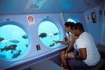 Young hispanic couple on undersea tourist boat looking at fish through window, Avalon Harbor, Catalina Island, California