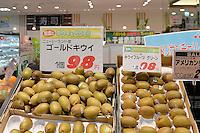 Tsudanuma, Chiba,  Japan, <br /> Photo by Masanori Udagawa<br /> www.photowellington.photoshelter.com
