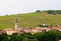 vineyard and village morgon beaujolais burgundy france