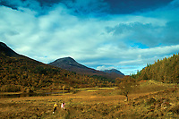 Walking through Coulin Forest, Ross & Cromarty, Northwest Highlands