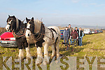 OLD STYLE: Ploughing in the old style at Ardfert Ploughing Championships on Sunday were David O'Connor (Macroom), Jack Condon (Abbeydorney), Paddy O'Leary (Kilflynn), Nora Casey (Ballyroe) and Sonny Egan (Lixnaw)..